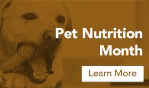 blog_nutrition_brown